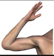 square root arm 1