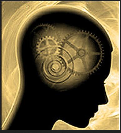 brain 9999 gears falk
